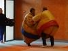 Fête du judo 2013